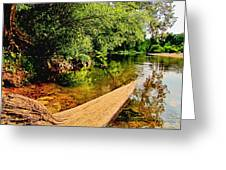 Castor River View Greeting Card