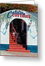 Catalina Cottages Greeting Card