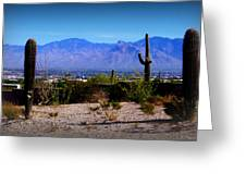 Catalinas From Picture Rocks Road Greeting Card