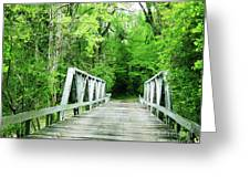 Catalpa Plantation Bridge Greeting Card