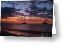 Catamarans  At Sunset Greeting Card