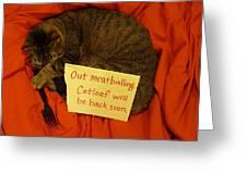 Catloaf Greeting Card