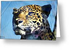 Cats Eyes - Leopard Greeting Card