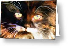 Cats Eyes Greeting Card by Clare VanderVeen