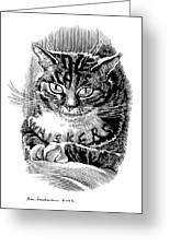 Cat's Whiskers, Conceptual Artwork Greeting Card by Bill Sanderson