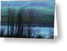 Cattails In Mist Greeting Card