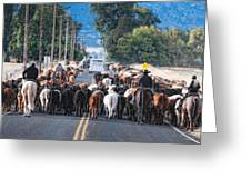 Cattle Drive 3 Greeting Card