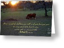 Cattle On A Thousand Hills Greeting Card