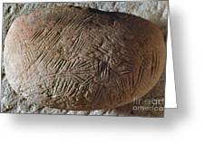Cave Art: Incised Rock Greeting Card