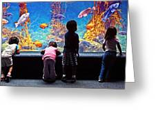 Celebrating Life Under The Sea  Greeting Card