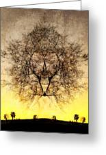 Celestial Sunrise Greeting Card