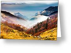 Central Balkan National Park Greeting Card by Evgeni Dinev