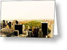 Central Park And The New York City Skyline From Above Greeting Card