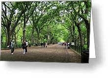 Central Park Arbor Walk Spring Greeting Card