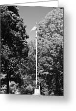 Central Park Flag In Black And White Greeting Card