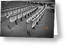 Chair Seating In An Arena With Oak Leaf Greeting Card