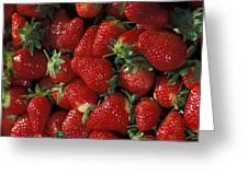 Chandler Strawberries Greeting Card