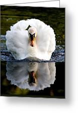 Charging Swan Greeting Card