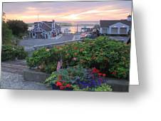 Chatham Fish Pier Summer Flowers Cape Cod Greeting Card by John Burk
