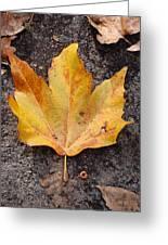 Cheerio Leaf Greeting Card