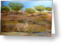 Cheetah Stops To Take A Drink Greeting Card