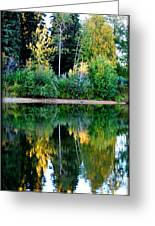 Chena River View Greeting Card