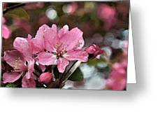 Cherry Blossom Photo Art And Blank Greeting Card Greeting Card