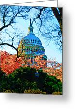 Cherry Blossoms And Capital Dome Greeting Card