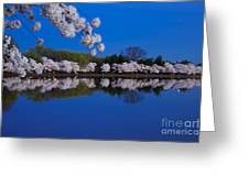 Cherry Blossoms And The Tidal Basin Greeting Card