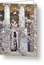 Cherry Blossoms Washington Dc 1 Greeting Card