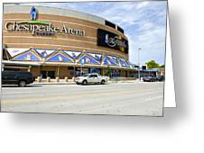 Chesapeake Arena Greeting Card by Malania Hammer