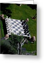 Chess At Large II Greeting Card