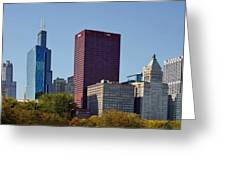 Chicago Skyline From Millenium Park Greeting Card