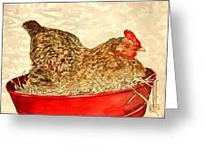 Chicken Hen Painting Art Print Greeting Card