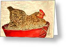 Chicken Hen Painting Art Print Greeting Card