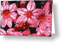 Chihuahua Flower Greeting Card