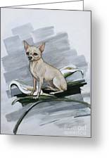 Chihuahua I Thought You'd Never Come Home Greeting Card