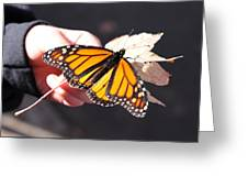 Child With Butterfly Greeting Card