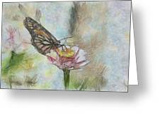 Chinese Butterfly Greeting Card