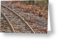 Chipmunk On The Railroad Track Greeting Card