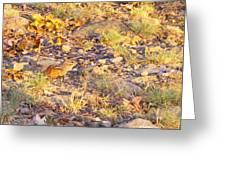 Chipmunk V1 Greeting Card