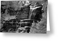 Chittenango Falls 2 Greeting Card