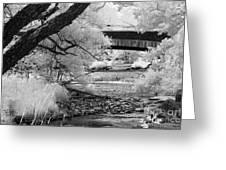 Chittenango Falls Park Greeting Card