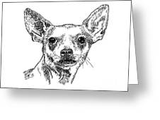 Chiwawa-portrait-drawing Greeting Card
