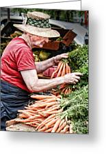 Choosing Carrots Greeting Card by Norma Warden