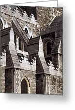 Christ Church Cathedral, Dublin City Greeting Card
