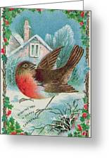 Christmas Card Depicting A Robin  Greeting Card