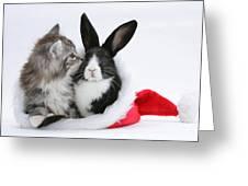 Christmas Kitten And Rabbit Greeting Card