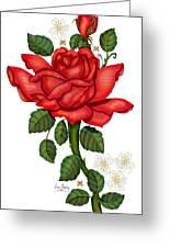 Christmas Rose 2011 Greeting Card