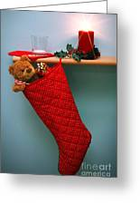 Christmas Stocking Filled With Presents With Empty Milk Glass.  Greeting Card